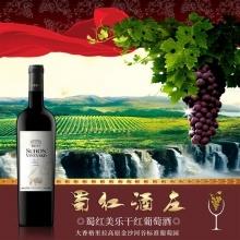 美乐干红葡萄酒750ml/瓶